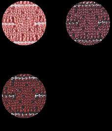 Lagunitas Red Palette